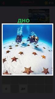 655 слов аквалангисты на дне которое усыпано морскими звездами 2 уровень