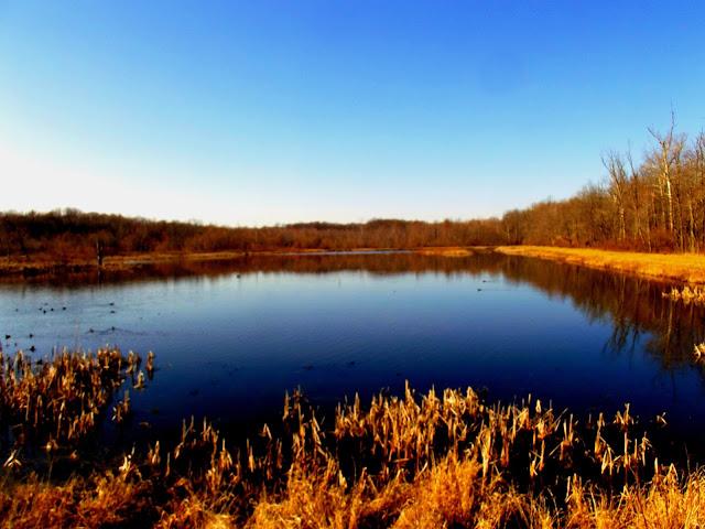 Muscatatuck National Wildlife Refuge - Wetlands
