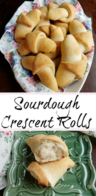 Sourdough crescent rolls are soft, ever so slightly sweet with a nicely rounded sourdough flavor. They are the perfect accompaniment to your next dinner!