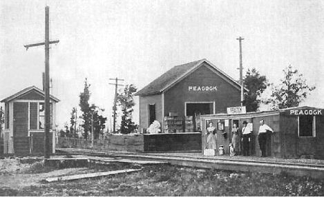 Peacock, Michigan railroad station