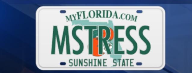 Plate vintage florida license