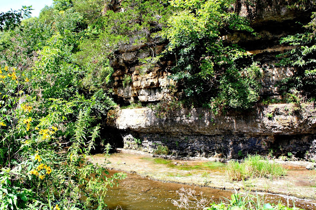 Canyon along Apple River in Illinois.