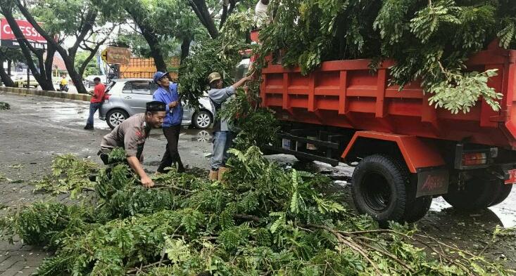 Pohon Tumbang di Kompleks Pasar Sentral, Kapolsek Imbau Warga Waspada!