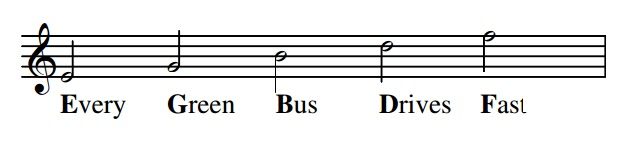 "The names of the notes on the lines of the treble clef can  be remembered using the phrase ""Every green bus drives fast"""