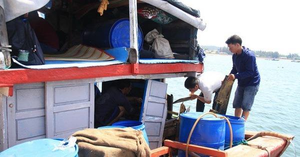 Tàu cá Việt Nam bị đâm ở Hoàng Sa, chính phủ Trung Quốc không thể vô can