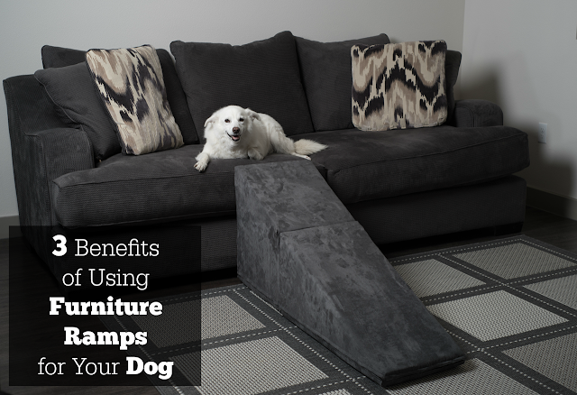 3 Benefits of Using Furniture Ramps for Your Dog