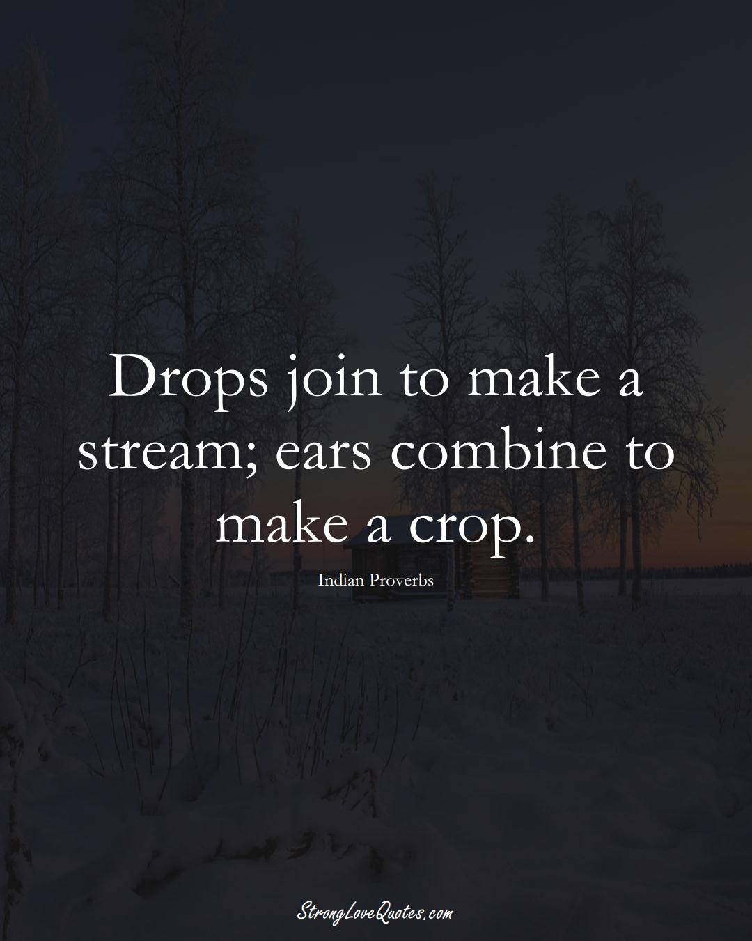 Drops join to make a stream; ears combine to make a crop. (Indian Sayings);  #AsianSayings
