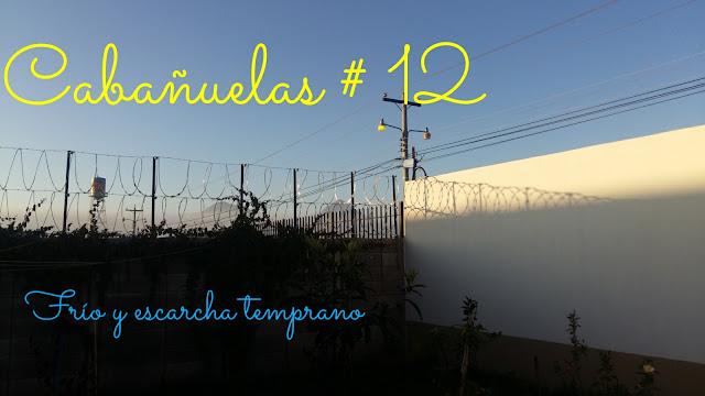 CABAÑUELAS ENERO 12