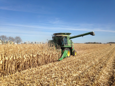 Corn Harvest in Minnesota