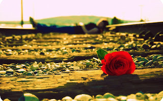 beautiful-love-rose-waiting-for-you-my-love-hd-image.jpg