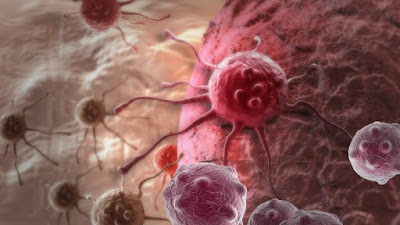 how-cancer-becomes-drug-resistant