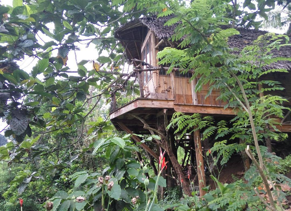 Rumah pohon Ijen Shelter