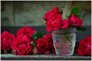3 Khasiat Sari Bunga Mawar Buat Kesehatan Perempuan