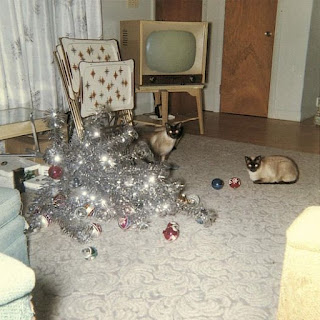 An aluminum tree lying in the middle of a room. There is a television, folding tray tables and two very guilty-looking cats.