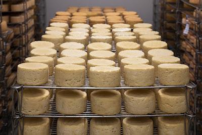 الجبن النمساوي يحقق نسبة صادرات قياسية
