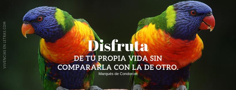 portada facebook con aves y frase