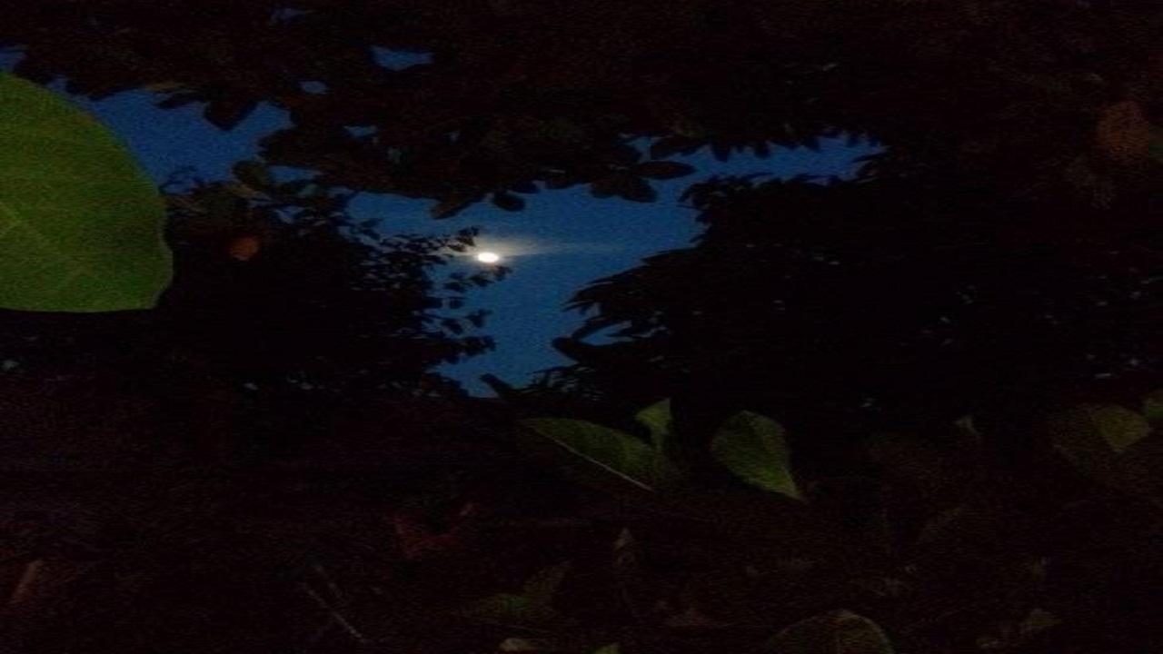 Puisi rindu bersama hujan malam