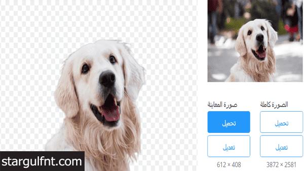 بدون برامج ولا فوتوشوب موقع إزالة خلفية الصورة
