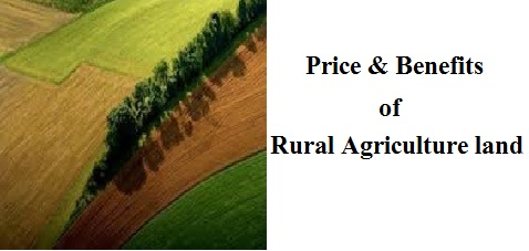 land price in rural agriculture land