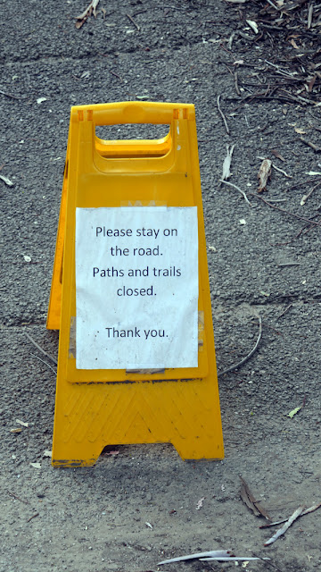 Stay off the narrow pathways at the LA Arboretum