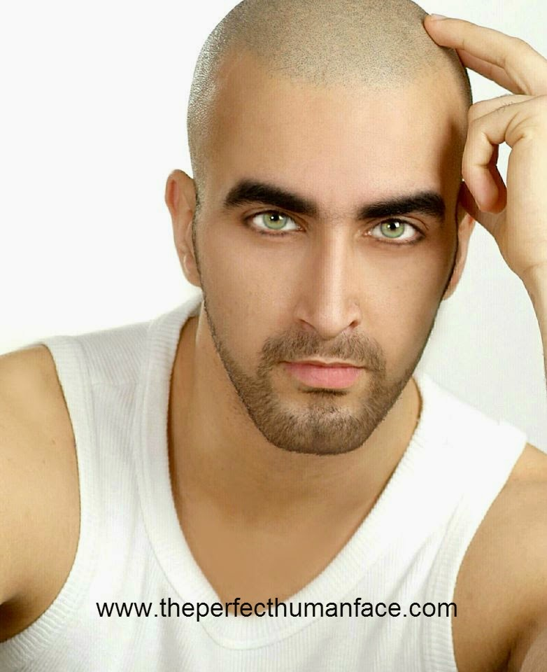 The gallery for --> Perfect Male Face
