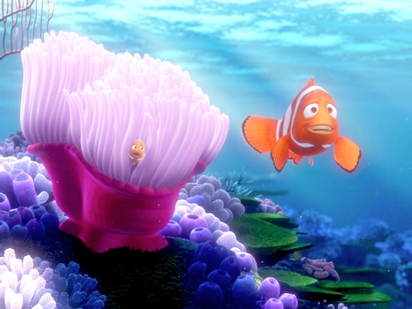 finding nemo marlin and dory relationship questions