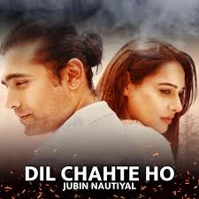 दिल चाहते हो/Dil Chahte ho Hindi lyrics-Jubin Nautiyal|Payal Dev