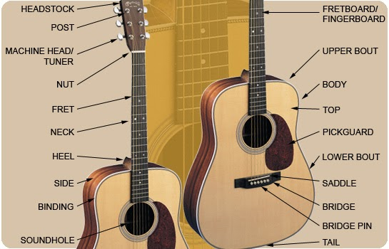 acoustic guitar the structure of the guitar. Black Bedroom Furniture Sets. Home Design Ideas