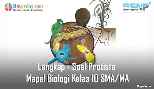 Lengkap - Soal Protista Mapel Biologi Kelas 10 SMA/MA