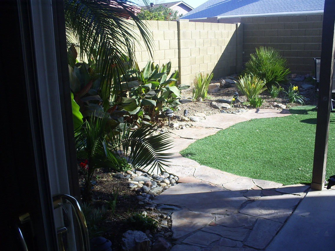 Backyard Paradise: Brad's Tropical Paradise: Backyard View Of The Tropical