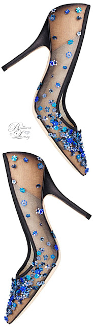 Brilliant Luxury ♦ Dior embroidered pump