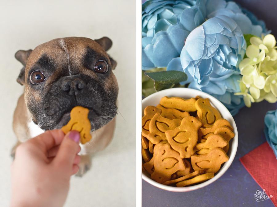 Rezept für selbstgemachte Hundekekse mit Karotten und Kurkuma