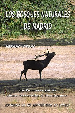 LOS BOSQUES NATURALES DE MADRID. VERANO-OTOÑO