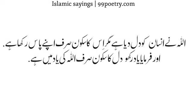 Allah ne Insan Ko Dil Diya Hai-islamic sayings roman-urdu