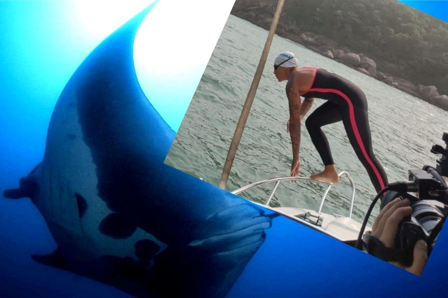 Raia-manta recebe o nome de Campeã olímpica condecorada madrinha das raias gigantes