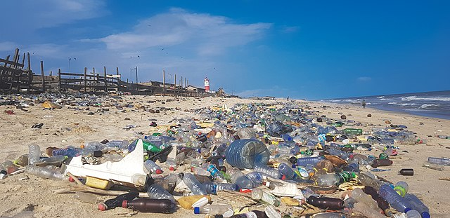 essay on the bad effects of plastic