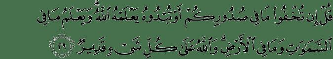 Surat Ali Imran Ayat 29