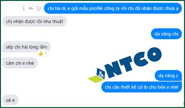 thiet ke profile cong ty