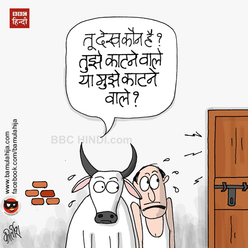 beef ban, congress cartoon, bjp cartoon, cartoons on politics, indian political cartoon, cartoonist kirtish bhatt