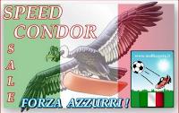Logo Saldi Forza Azzurri: sottocosto e non solo ma prima della partita