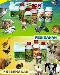 Sedia Veterna NASA Di Kabupaten Aceh Barat Daya 081360421856