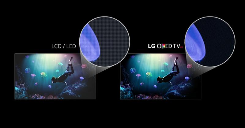 هل-لوحة-الشاشة-من-نوع-LCD-OLED