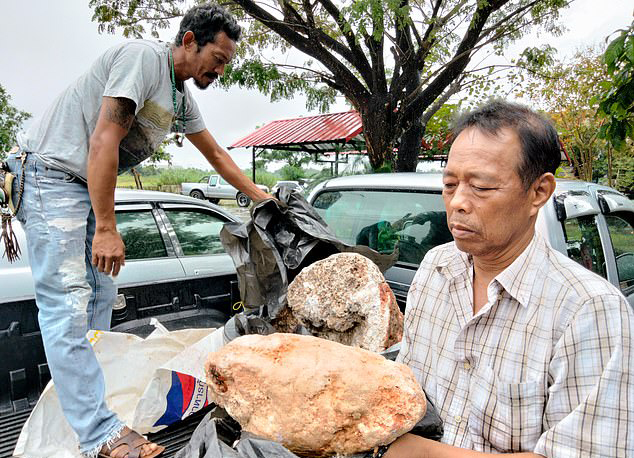 Thai Fisherman Finds Huge Chunk Of Whale Vomit - That Could Be Worth £2.4Million