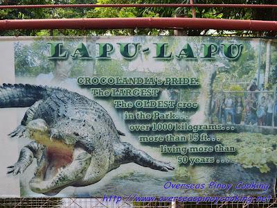 Crocolandia's Lapu-Lapu