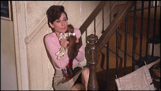 Wait Until Dark Audrey Hepburn blind thriller suspense movie