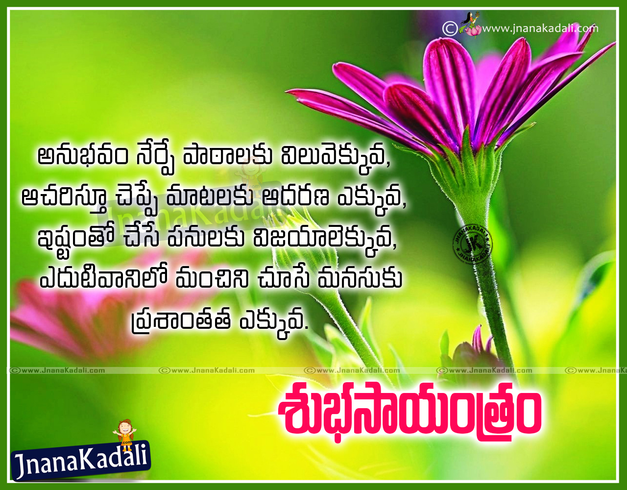 Latest Quotes About Life Top Telugu Famous Good Evening Inspirational Quotes And Sayings