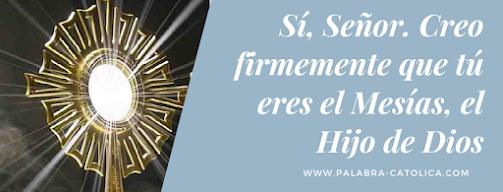 Evangelio del día Jueves 29 de Julio - San Juan 11, 19-27