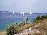 regata Labud Classic 2005, Split-Milna-Split otok Brač slike
