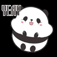 Cute Chubby Panda