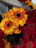 تجارة الزهور